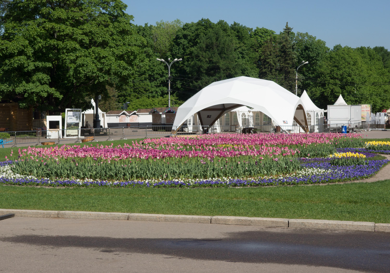 цветники в парке Сокольники