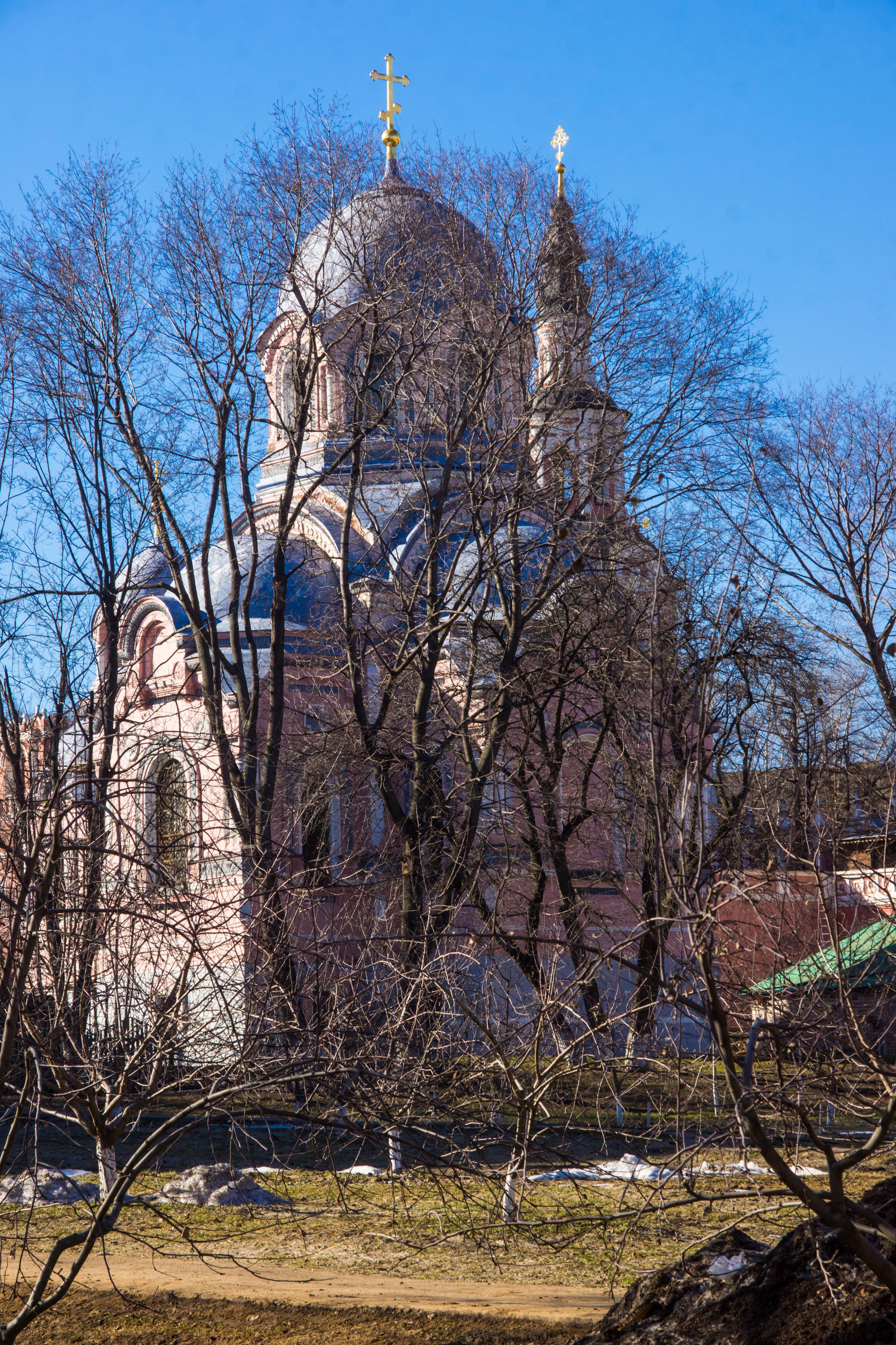 Donskoy monastery in spring