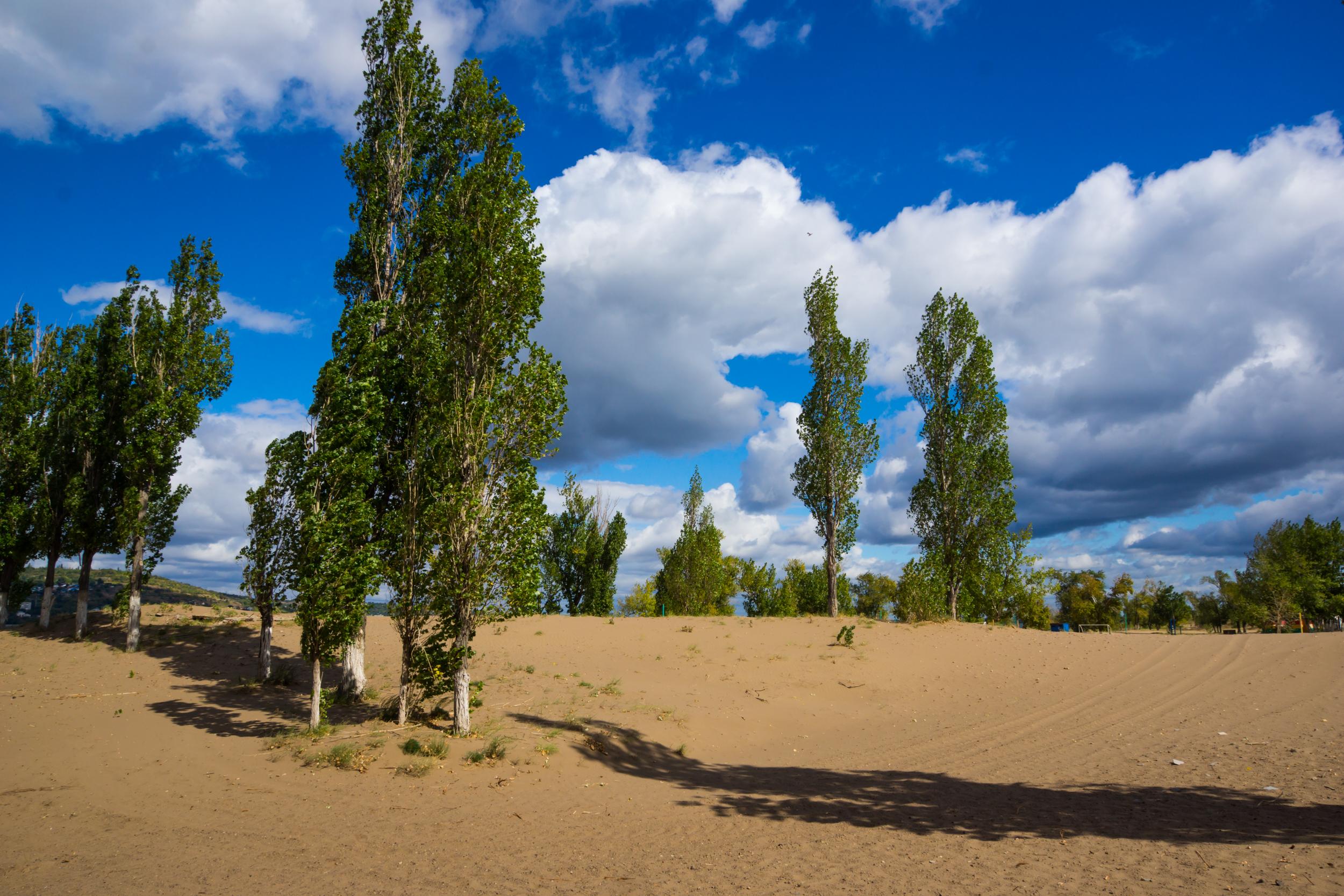 Saratov playa-balneario en la isla entre Alberta y Engels