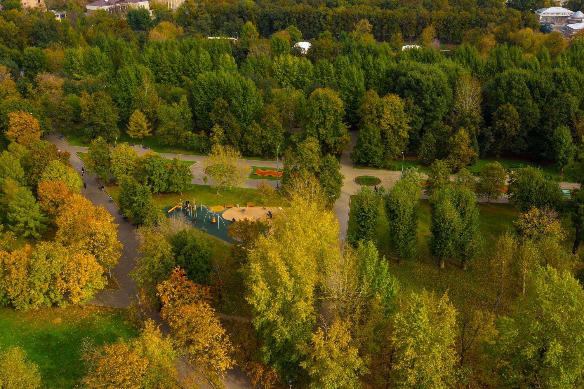 Осенний парк сверху