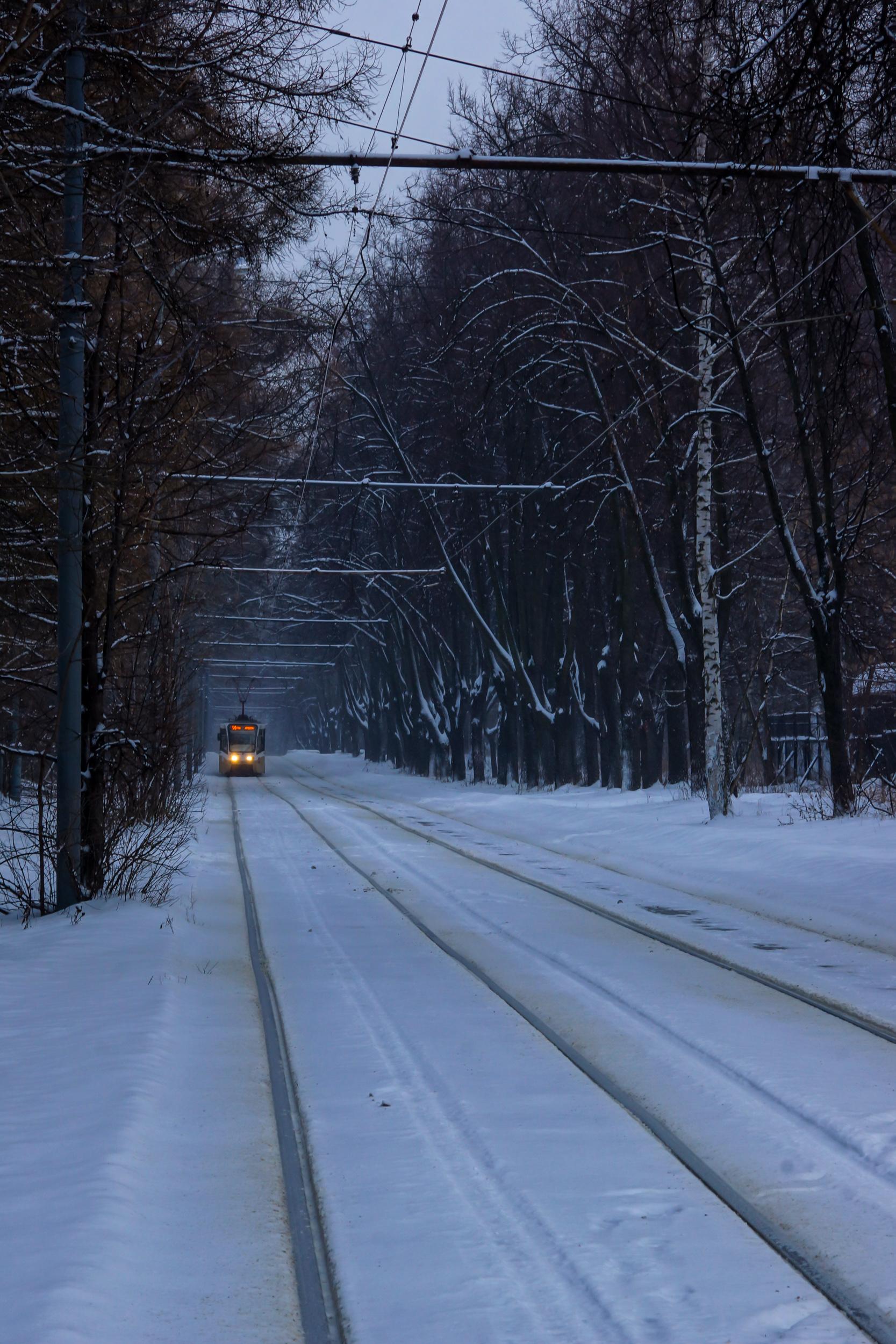 Трамвай в парке