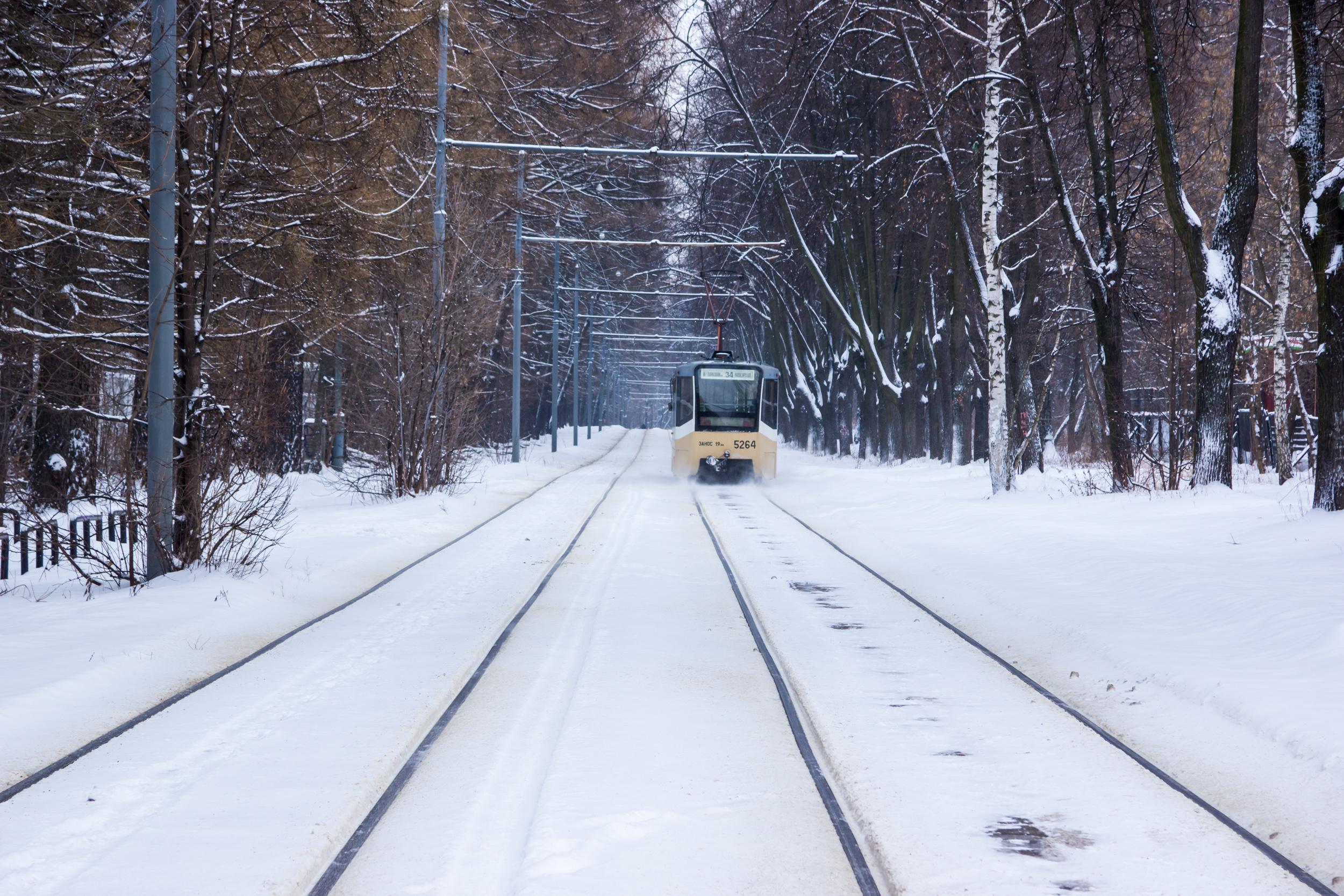 Зима в парке - на остановке в Измайловском парке
