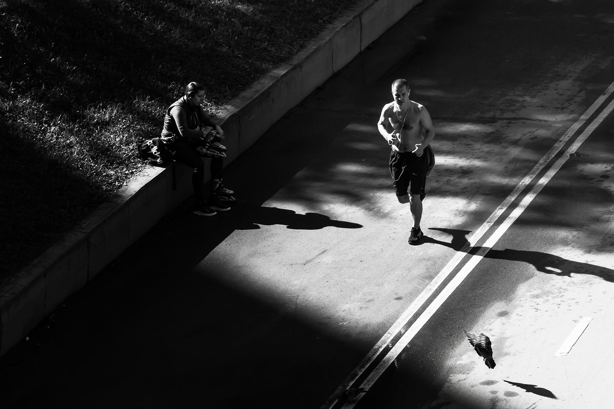 Любители бега в парке Воробьевых гор