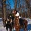 Конная прогулка в зимнем лесу — Энгельский лесопарк