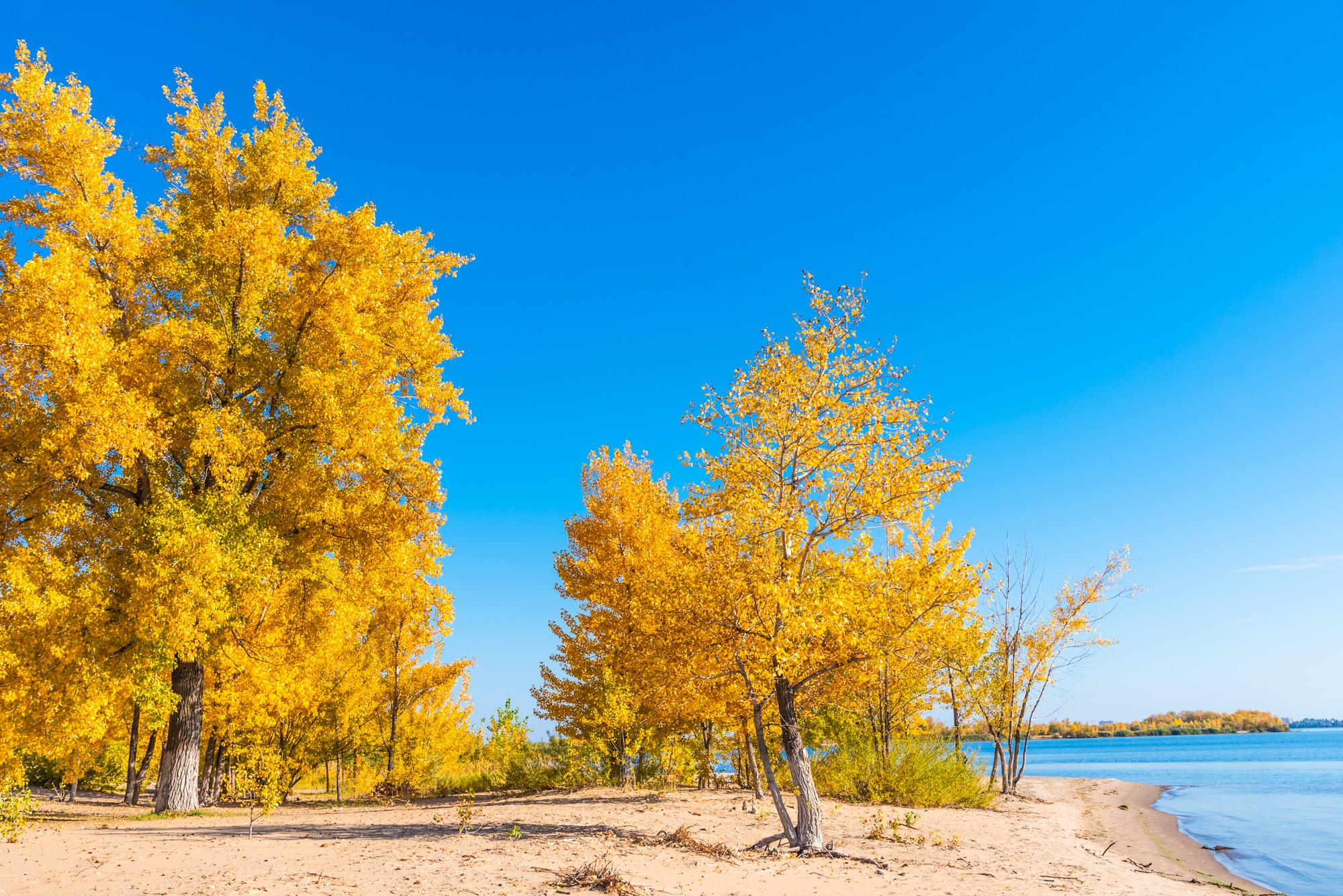 осенний пейзаж на реке