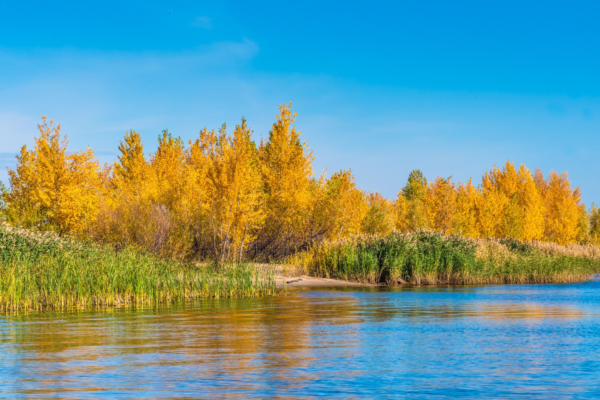 речной осенний пейзаж