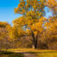 Осенний пейзаж – фото из российской провинции