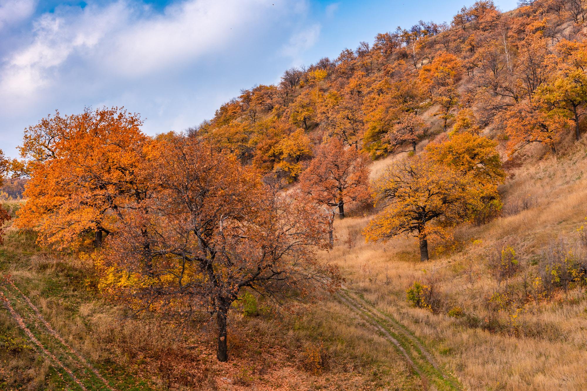 Осенний пейзаж в холмах