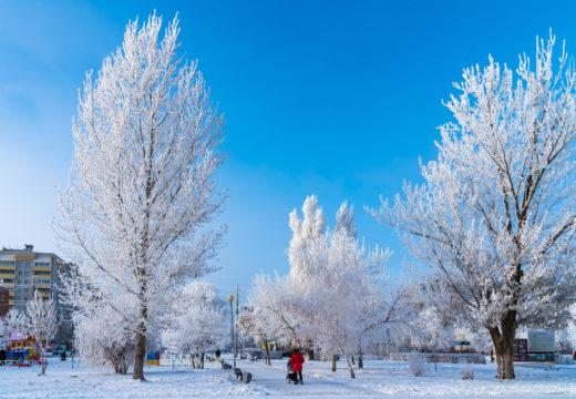paysage urbain d'hiver