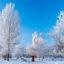 Зимний городской пейзаж — красота с нами рядом
