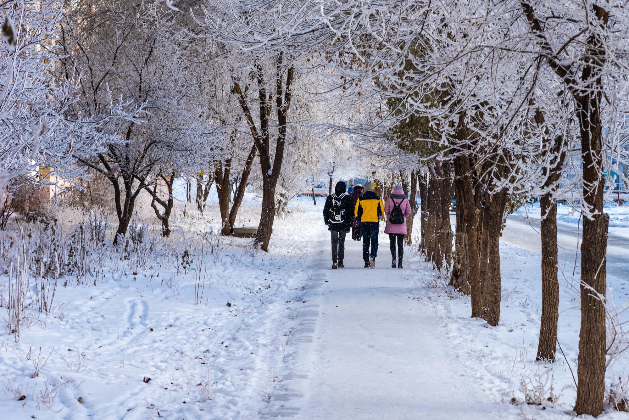 зимняя городская фотография