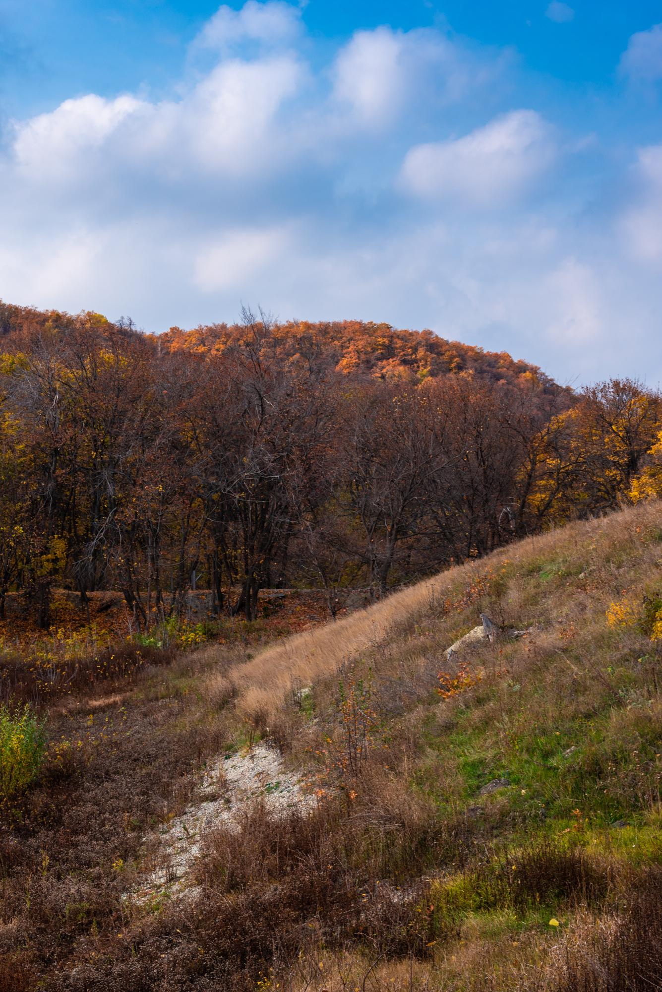 Смирновское ущелье фото осенью
