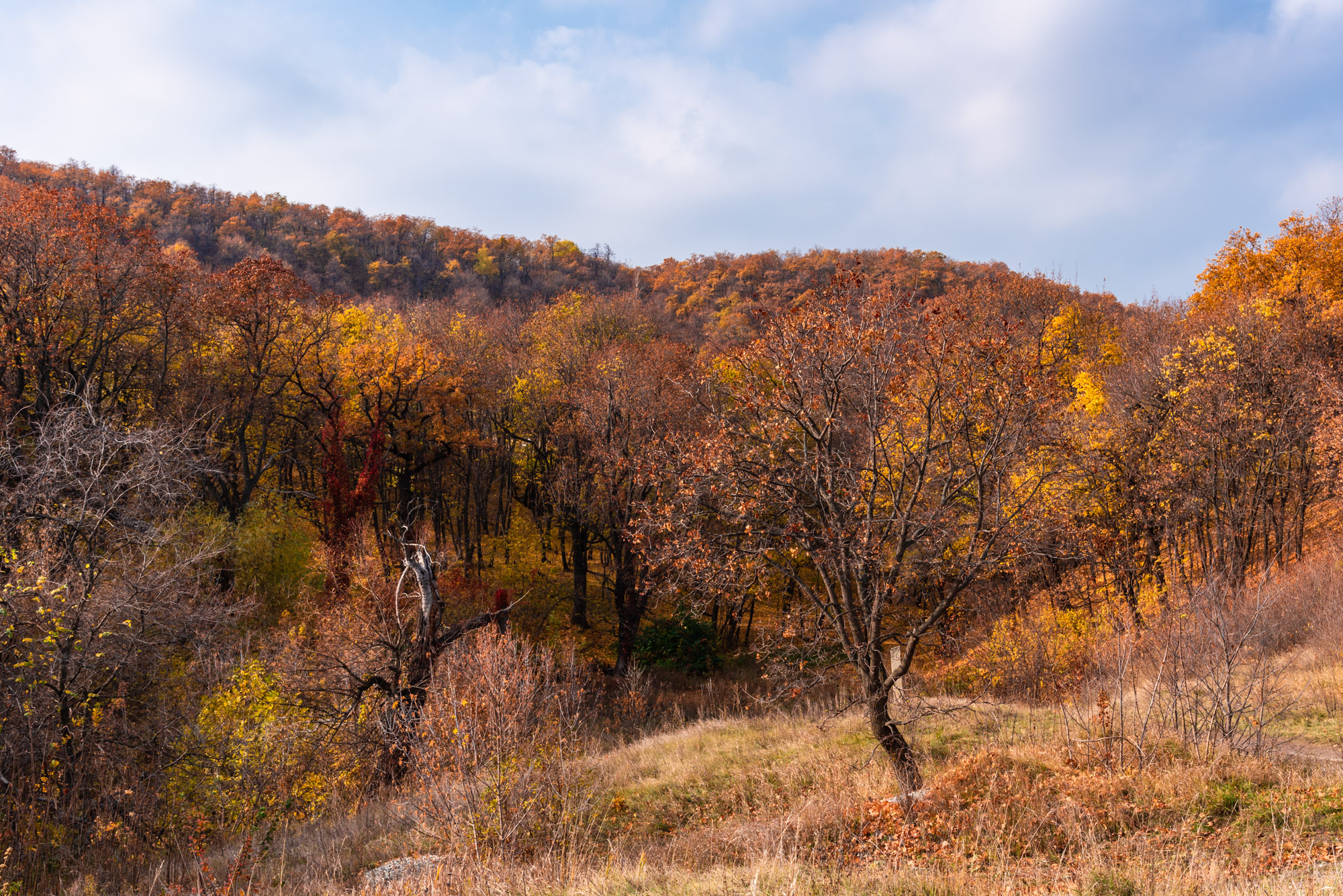 Смирновское ущелье осенью