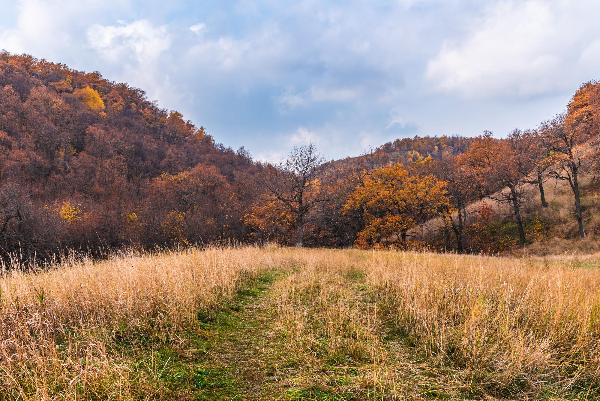дорога к Осени