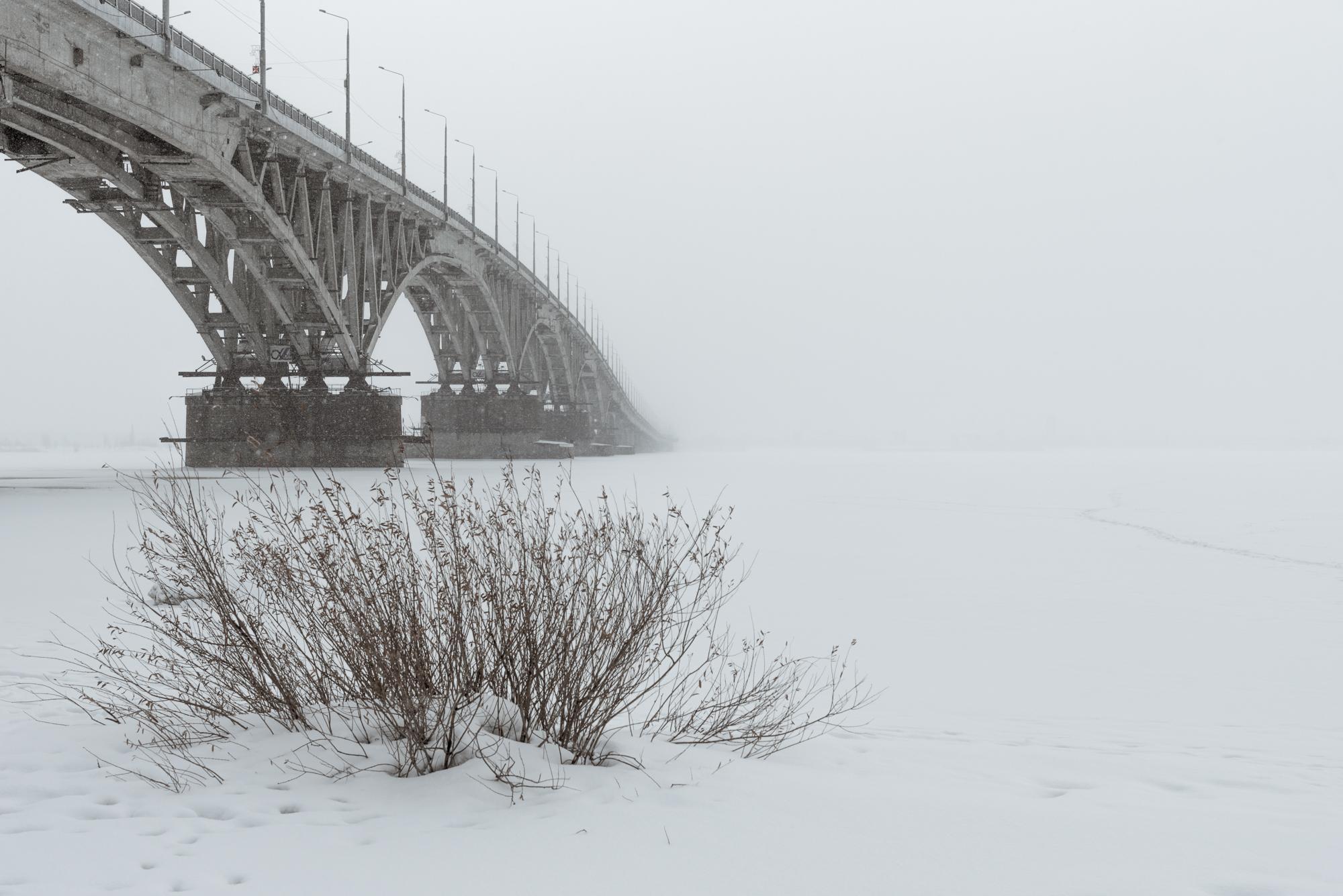 мост и туман