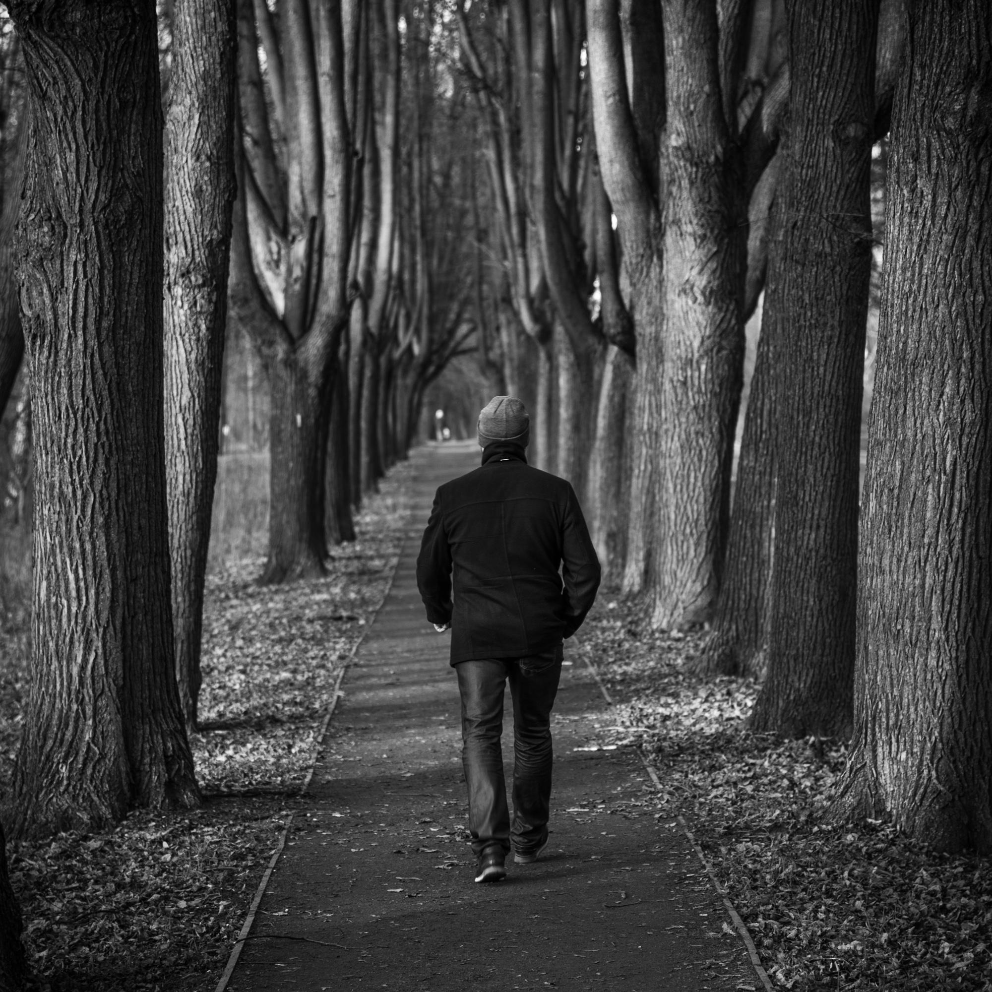 Ноябрь в Измайловском парке