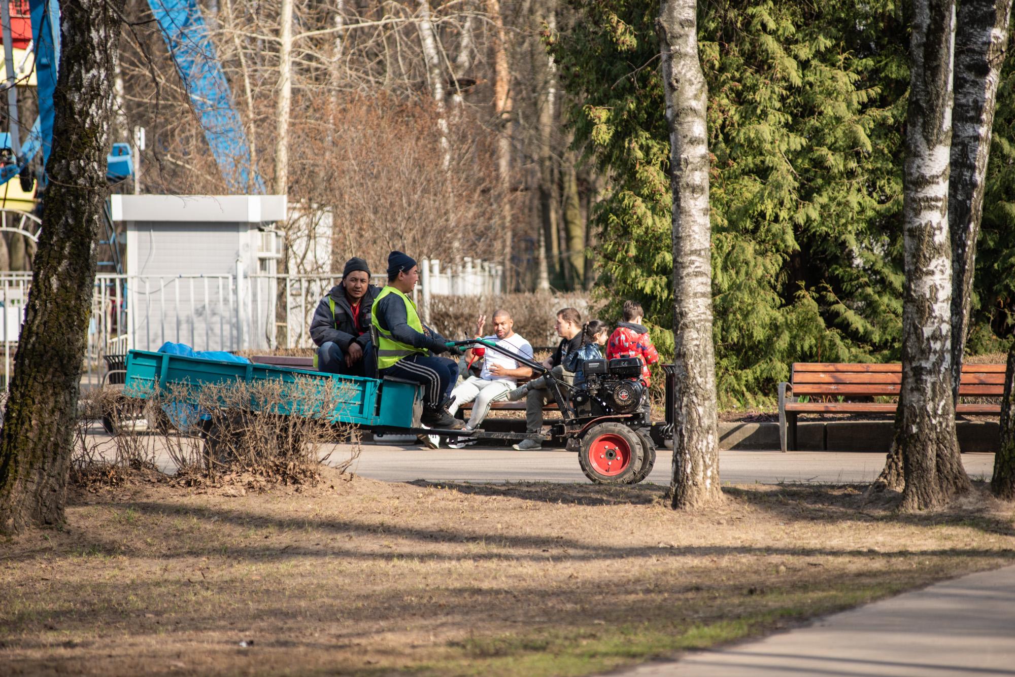 работники парка