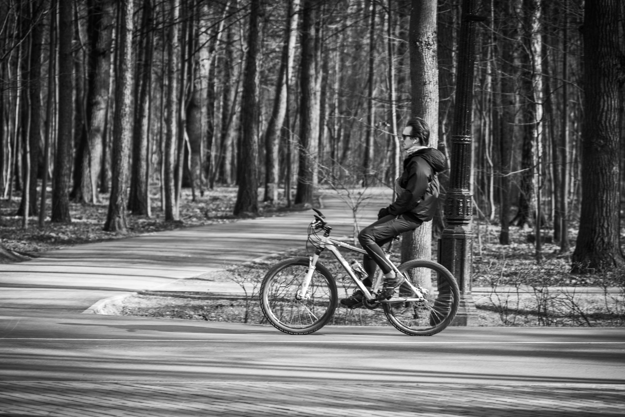 Велосипедисты в парке